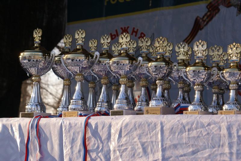 Кубки Московской Лыжни 2010